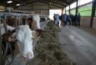Sécheresse : le Département soutient son agriculture
